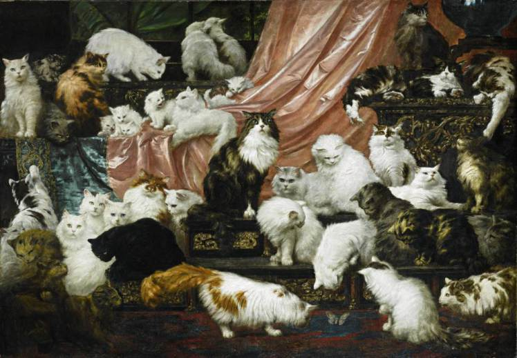Picture of Cats 1