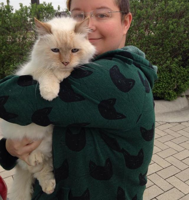 17 Year Old Abandoned Cat Tells Her New Family How Grateful She Is For Them Every Day 2