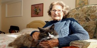Woman Was Put Into A Retirement Home, Her Cat Wasn't Ready To Let Go