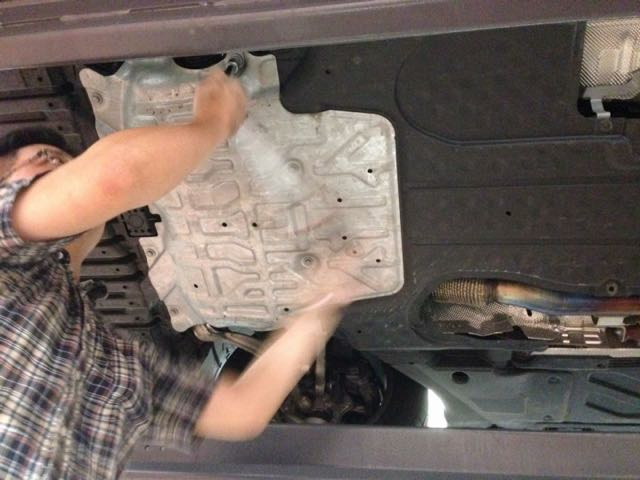 Man Sacrifices His Own Car and Risks His Own Life To Save One Special Cat 3
