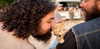 BIKER SAVES BURNED KITTY AND THEY BECOME TRAVEL COMPANIONS