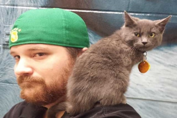 A Man Takes a Chance on a Hissy Shelter Kitty, After a Few Pets, Everything Changes