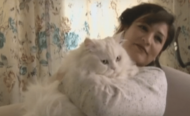 Turkey: Flat Owner Wins 'Landmark' Victory for Cats Thanks to One Wonderful Judge