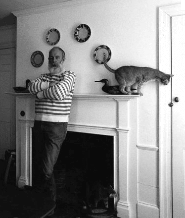 edward-gorey-cat-place