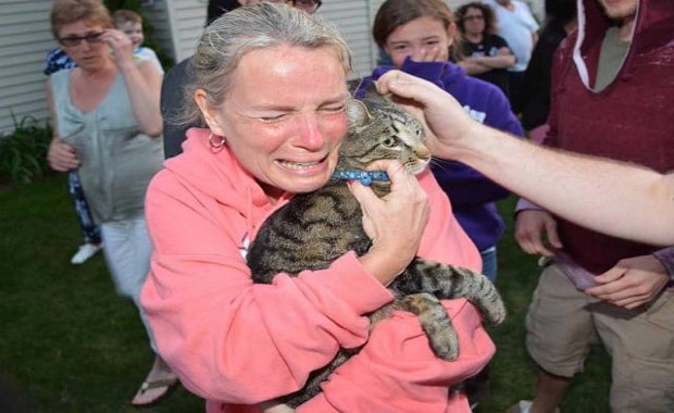Missing Cat Saved from Well Reunited with Human Mom