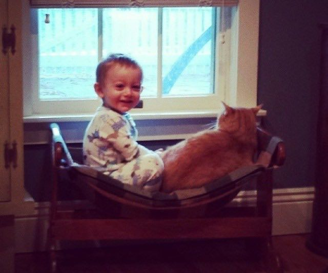 Once Unwanted Ginger Cat Becomes Guardian to Boy, His Human for Life! 5