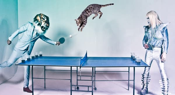 """""""Galactic Tiger vs CATPONG!"""" 5 Million Hits on Youtube in Just a Few Days! -VIDEO"""