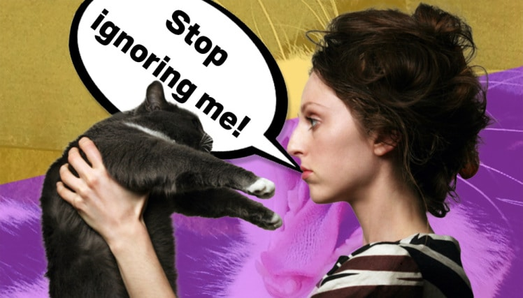 14 Exclamations Every Cat Lover Can Relate To