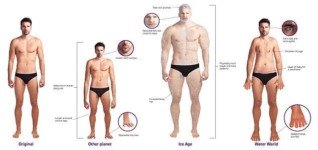 Future Evolution Men