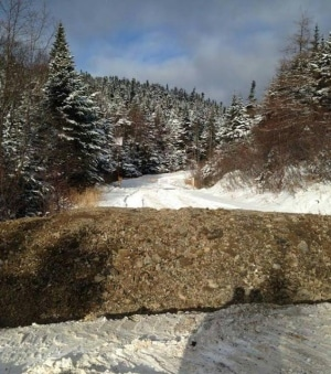 A contractor dug a trench across the road to the Random Island dump on Tuesday. (Feral Felines)