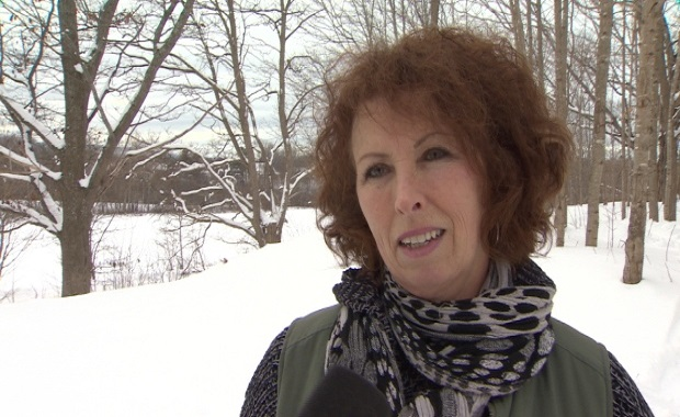 Kings SPCA president Daphne Moore-McKnight is shown in the area behind the animal shelter that is slated for a feral cat sanctuary. (Paul Palmeter/CBC)
