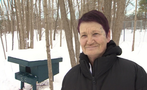 Volunteer Louise Sweeney has already built four cat shelters from recycled pallets and styrofoam. (Paul Palmeter/CBC)