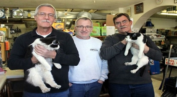2 Sibling Kittens Find New Home at Hammerhead Hardware in Roanoke, VA
