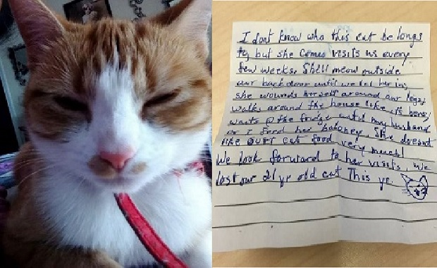 Cat Went to Visit The Neighbors and Came Home with This Special Note Attached to Her