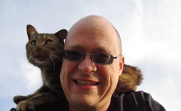 Lost Cat in Need of Help Befriends a Traveling Man, Begging for Help