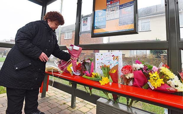 """A lady lays a floral tribute to """"Bus Stop Cat"""" Photo: © Solent News & Photo Agency"""