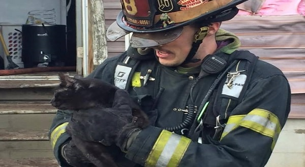 Ohio Firefighters Save Two Cats From Losing One of Their Nine Lives
