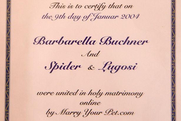 The certificate of marriage between Barbarella and her two cats
