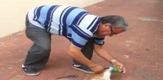 Good Samaritan Saves Kitty From Suffocating - VIDEO