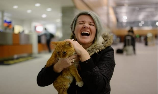 Nigel the Cat, Lost During a Road Trip … and the Happy Ending!