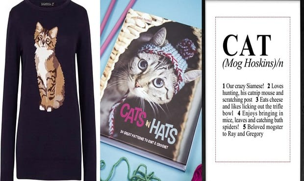 Official Crazy Cat Lady Check-list! The 17 Items You Absolutely Must Have to Be a True Cat Lady of Today!