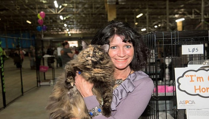 524 Dogs & Cats Find Forever Homes Over the Course of Just One Weekend!