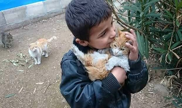 """People """"Staying Behind"""" to Save Stray and Displaced Cats and Dogs in War-torn Syria"""