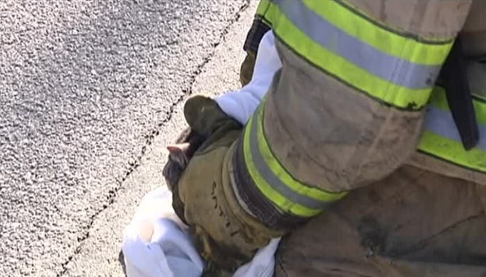 Firefighters Save the Day Again. This Time in Erie, Pennsylvania!