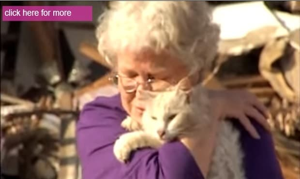 Tornado Victim Finds Her Long Lost Cat During Interview, One Month After the Disaster!