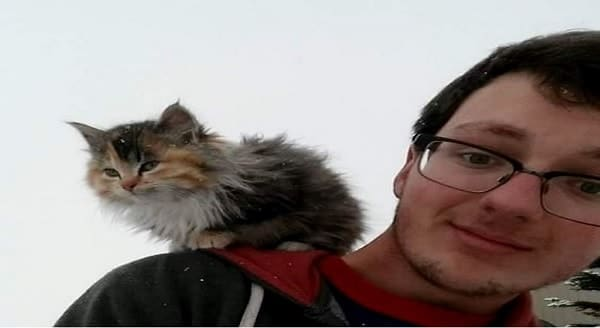 Tiny Calico Kitten Claims the Shoulder of a Carpenter, It Was Love at First Sight!