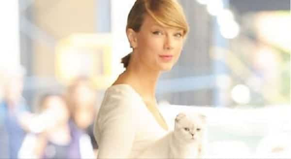 Taylor Swift's Cat, Olivia, Trying to Break Open a Bag of Treats – VIDEO