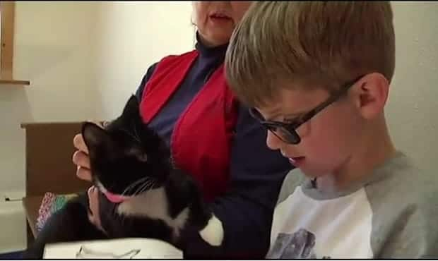 Kids Reading to Shelter Dogs and Cats in South Carolina