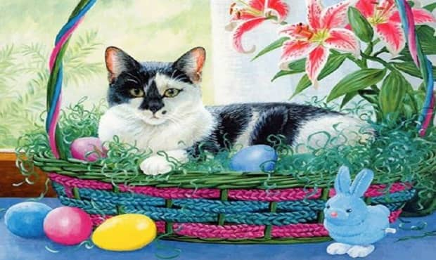 Easter Safety for Your Cat! This is a Must-read!
