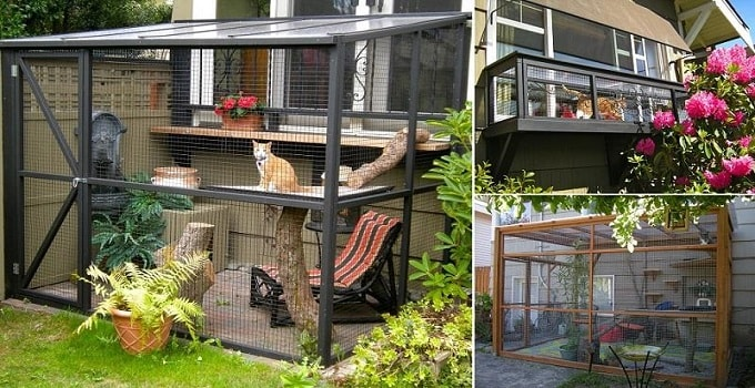 "Safe ""Catios"" on Display at Santa Cruz County Catio Tour This Weekend! (15 Photos)"