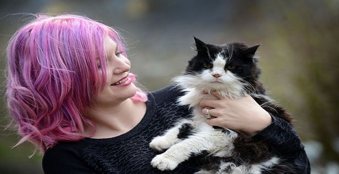 Anna Gough believes Tammy could be the oldest cat in the UK