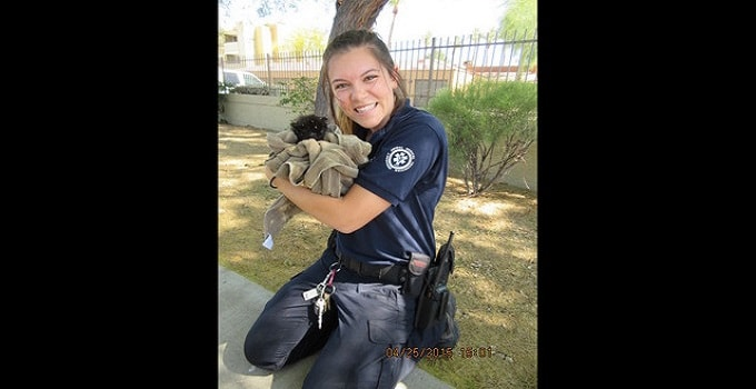 5-week Old Tiny Black Kitten Rescued from Phoenix Sewer
