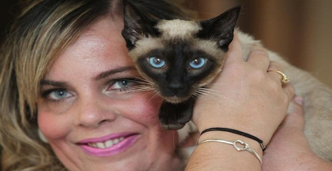 """Siamese Cat """"Miss Fudge"""" Is Taking the Internet by Storm!"""
