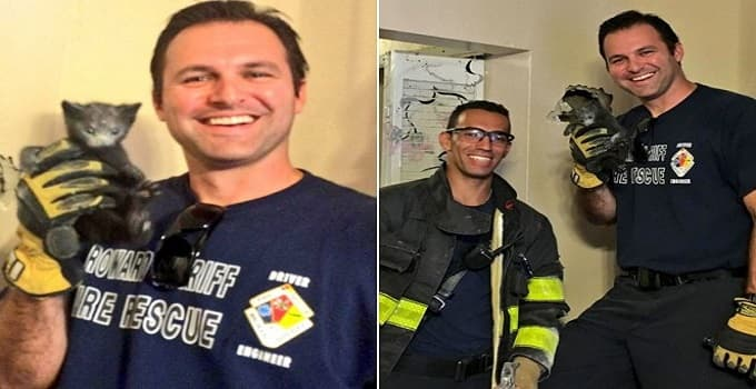 Mysterious but Frantic Meows Lead Firefighters to Trapped Kitten