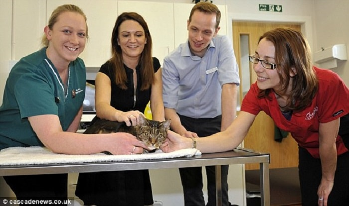 A team of specialist vets then carried out the intricate operation at Walker Green Vets in Timperley, Greater Manchester. Pictured with Shady (left to right) are head nurse Emma Greene, Ms Hutchinson, Veterinary surgeon Luke Ainsworth and veterinary cardiologist Emily Dutton