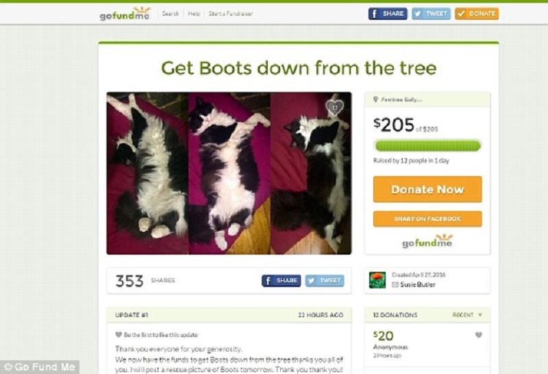 The Go Fund Me page raised $205 after the RSPCA, local council and fire brigade reportedly down a plea for help