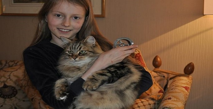 Marsha, 9, with cat Basja and the sink drain in which he got his paw stuck