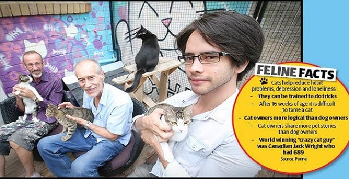 """Research Study in One Country Examines the """"Sociology of Cat Daddies"""" … Interesting Stuff!"""