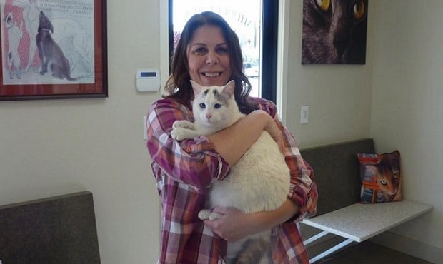 Muscat the cat was found six months after he went missing during the Valley Fire in Middletown. (Middletown Animal Hospital)