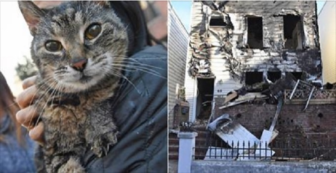 Woman and Her 24-year-old Senior Cat Rescued from Fire!