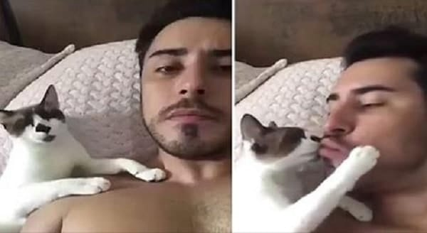 Cat Leans Over to Plant Smooches On His Cat Daddy's Lips - VIDEO