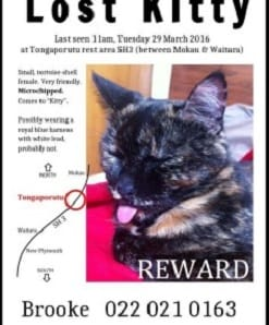 "A reward has been offered for ""Kitty""."