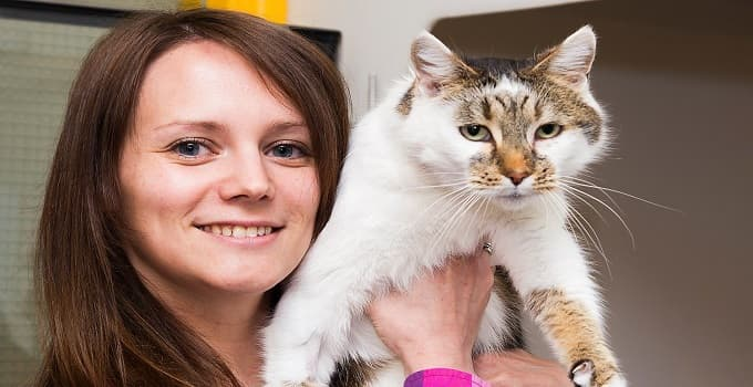 Rebecca Lee believed Chloe had died in a road accident. Photograph: Susan Dobbs/Cats Protection/PA