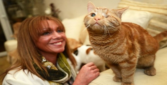 Woman Writes Book, the True Story of Two Very Special Kitties, With Proceeds to Benefit Area Shelter!