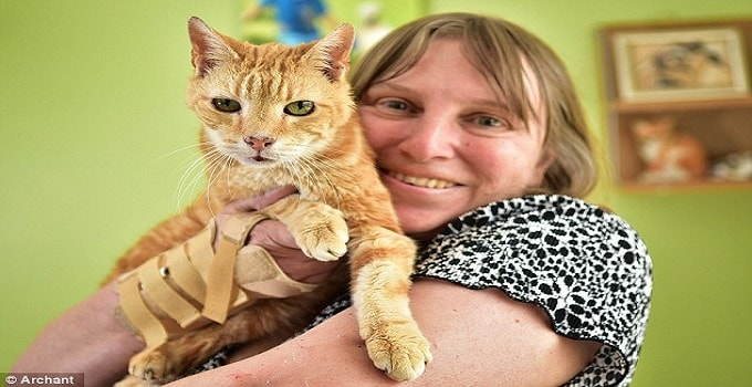 Is This the World's Oldest Cat? Owner Insists 30-year-old Ginger Cat Henry Should Take Title!