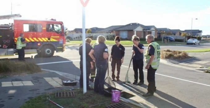 Rescuers have a team talk to work out what to do next.